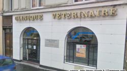 Clinique vétérinaire à lyon