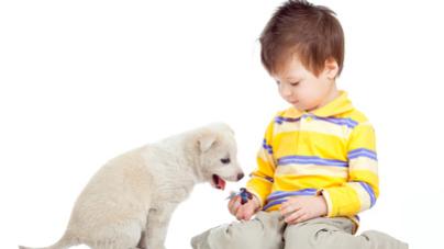 Les chiens, protecteurs des enfants contre certaines pathologies médicales?