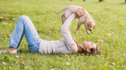 Les chiens et les chats touchés par la solitude