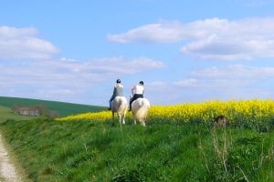 randonnee cheval