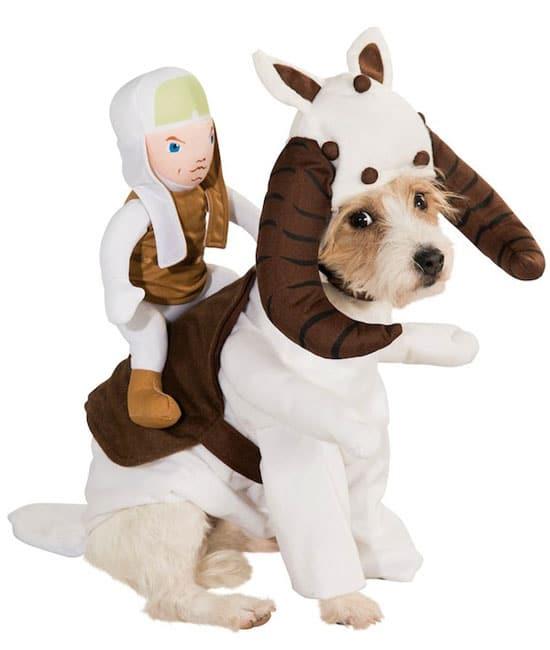 starwars-costume-tauntaun-pour-chien