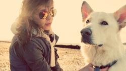 Intérêt de la promenade pour nos amis les chiens