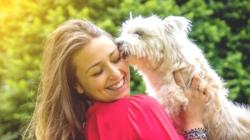 La moitié des français préfèrent leur animal de compagnie à leurs potes