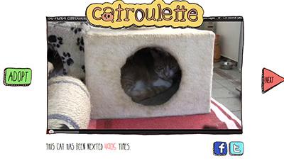 Catroulette, un site de rencontre pour les chats?