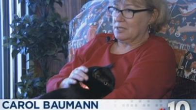 Un chat disparu durant l'ouragan Sandy est retrouvé 6 mois après