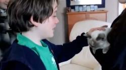 Une belle histoire entre ce chat et les enfants