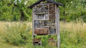 Qu'apporte un hôtel à insectes à votre jardin ?